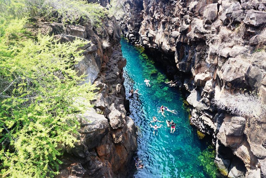 GALAPAGOS ISLANDS   Ecuador Travel Inspiration   Travel Videos   Destination Guides   ANYDOKO